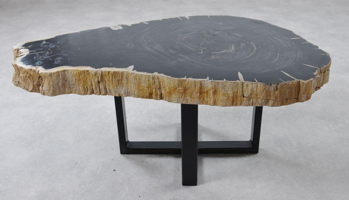 Salontafel versteend hout 36240