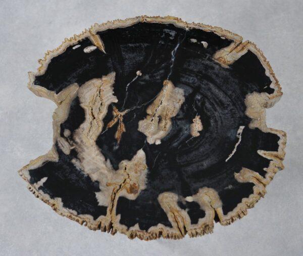 Salontafel versteend hout 36243