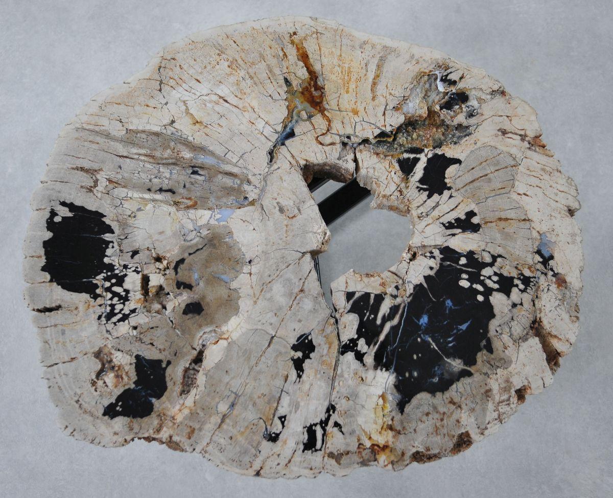 Salontafel versteend hout 36287