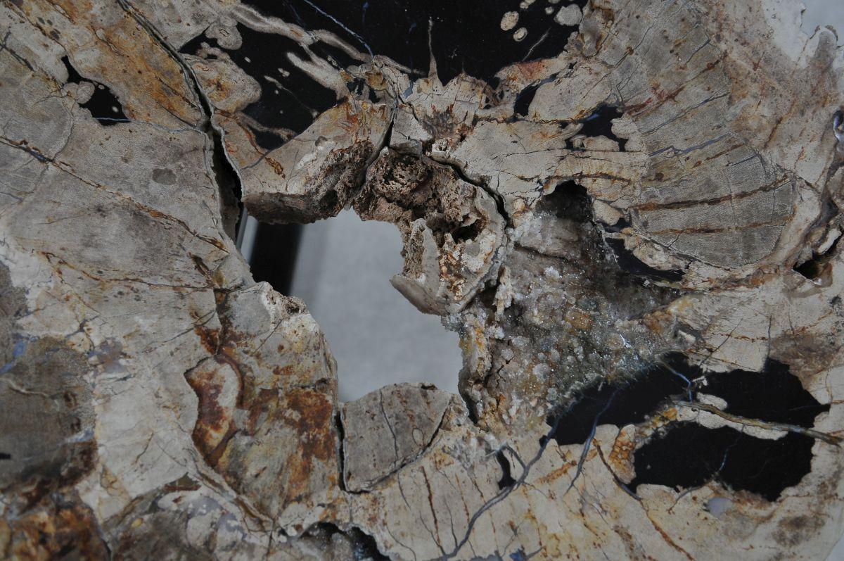 Salontafel versteend hout 36288
