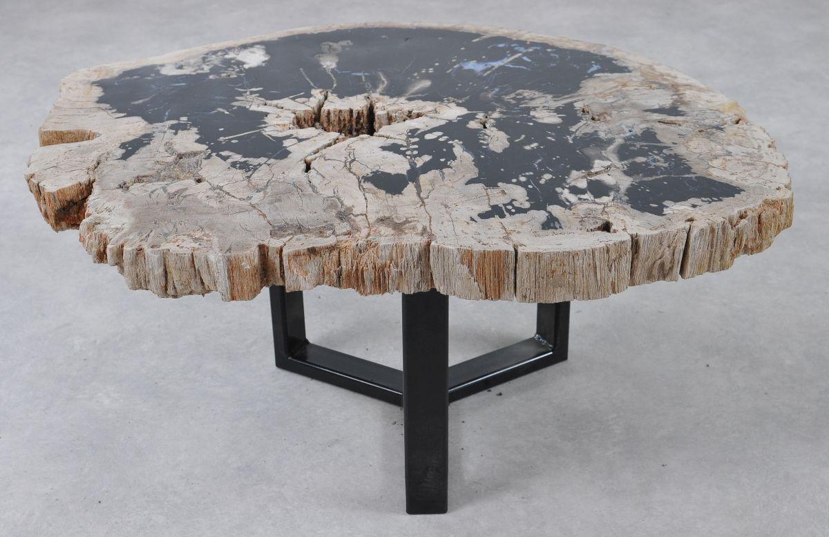Salontafel versteend hout 36290