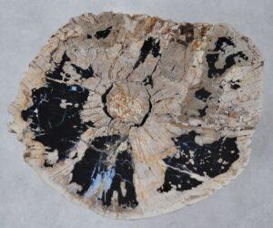 Salontafel versteend hout 36293