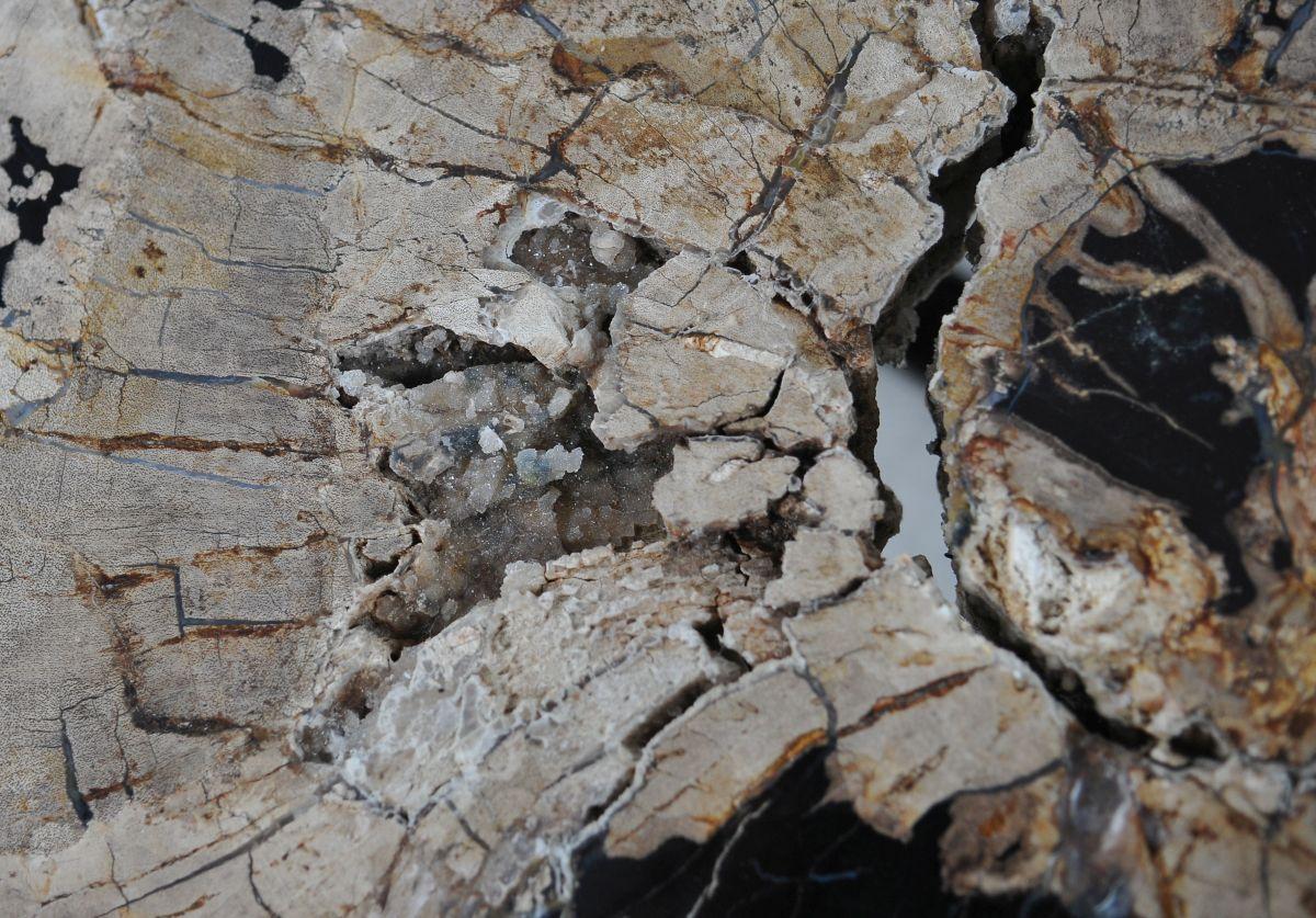 Salontafel versteend hout 36295