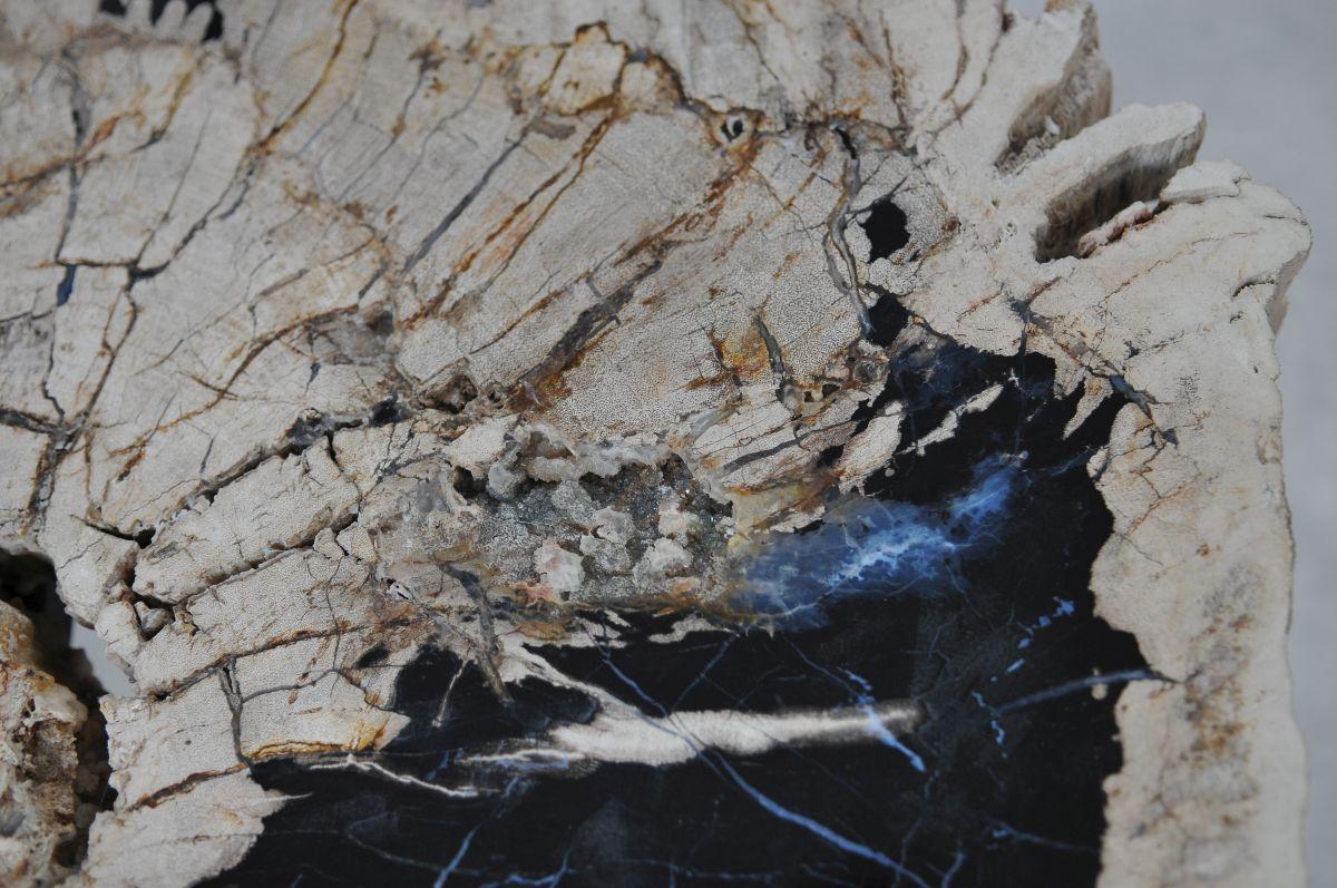 Salontafel versteend hout 36297