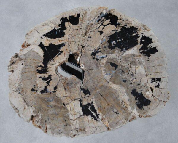 Salontafel versteend hout 36298