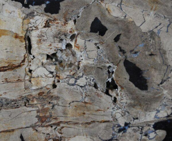 Salontafel versteend hout 36301