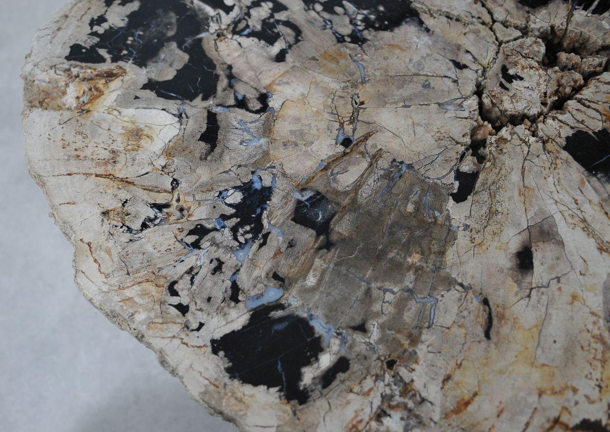 Salontafel versteend hout 36304