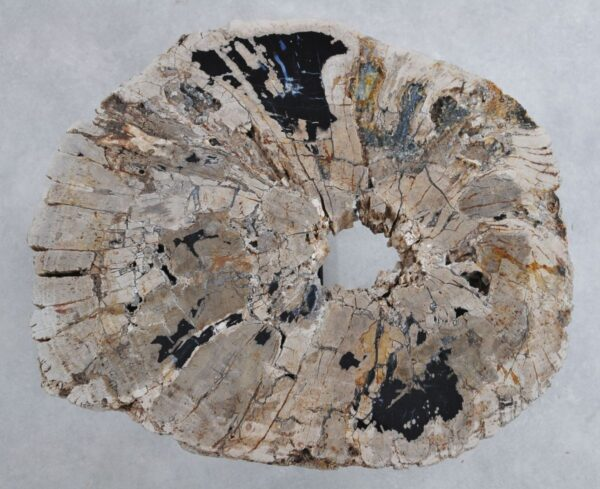 Salontafel versteend hout 36312