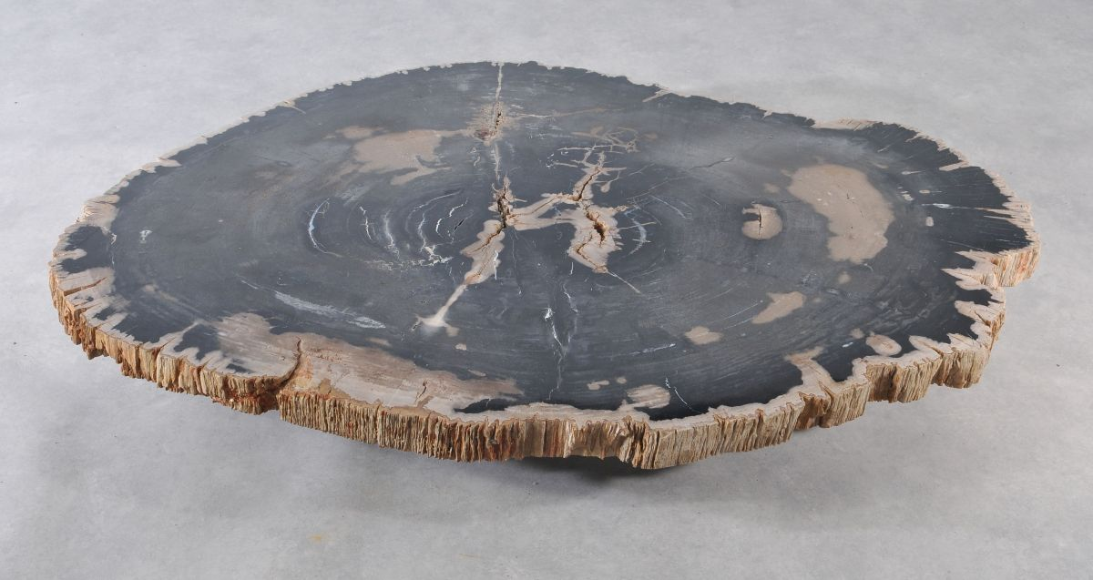 Salontafel versteend hout 36366