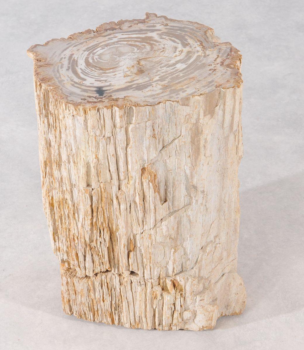 Side table petrified wood 36002