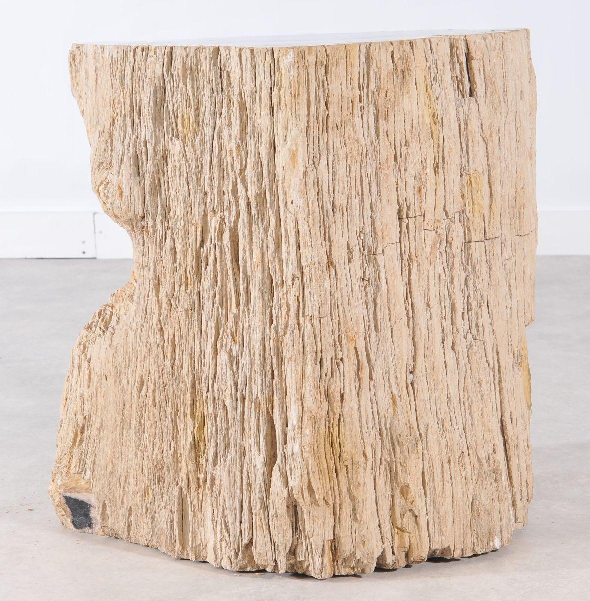 Side table petrified wood 36006