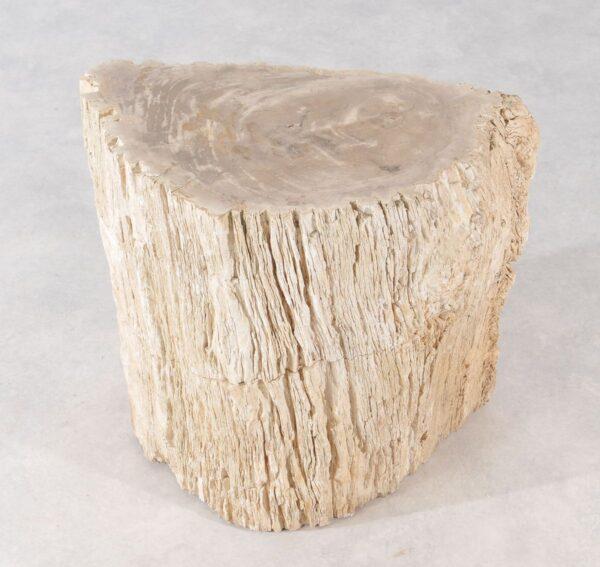 Side table petrified wood 36010