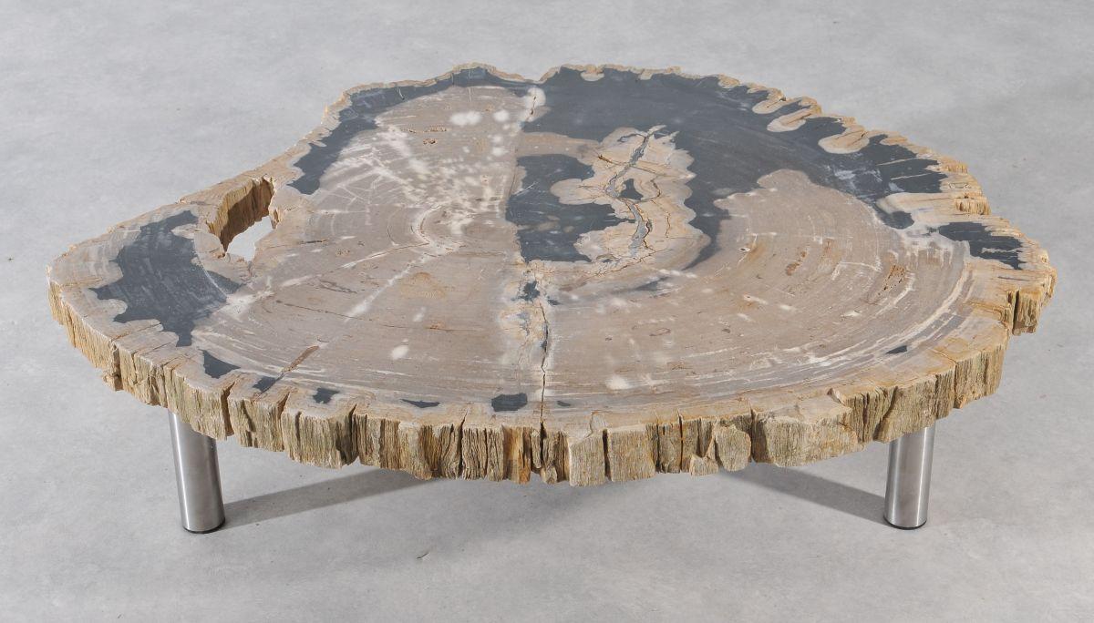 Table basse bois pétrifié 36146