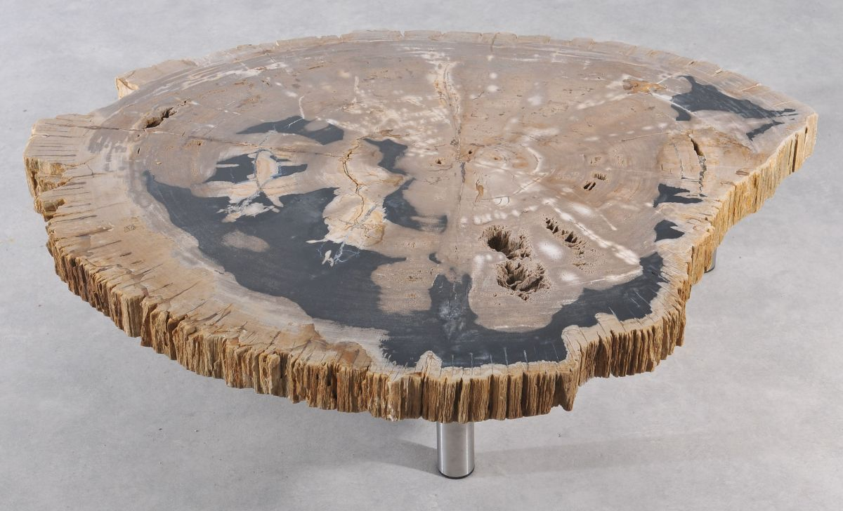 Table basse bois pétrifié 36149