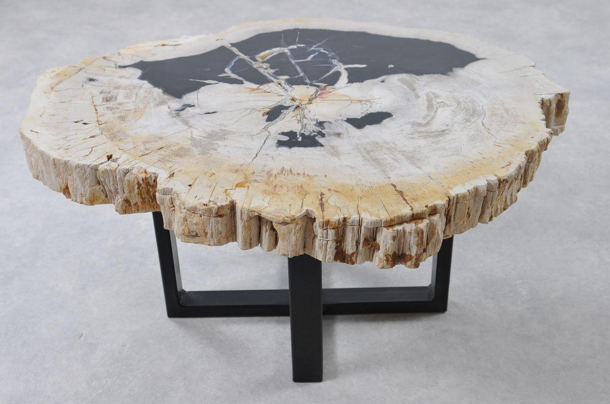 Table basse bois pétrifié 36150