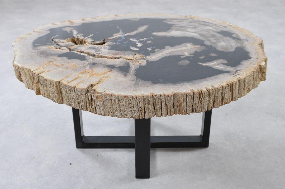 Table basse bois pétrifié 36155