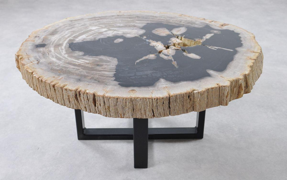 Table basse bois pétrifié 36156