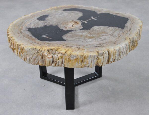 Table basse bois pétrifié 36157