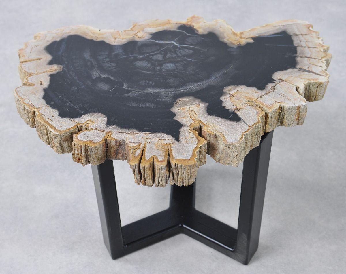 Table basse bois pétrifié 36159