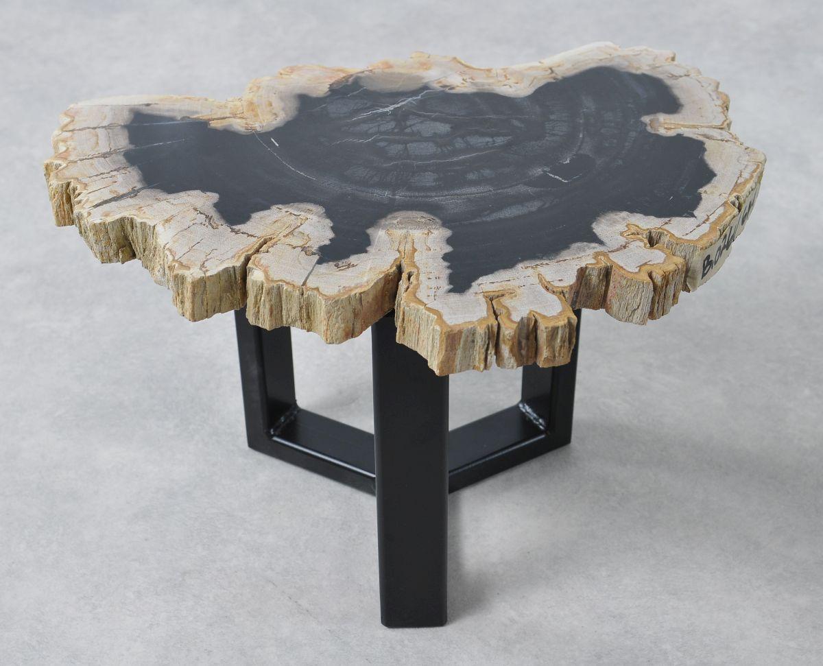 Table basse bois pétrifié 36161