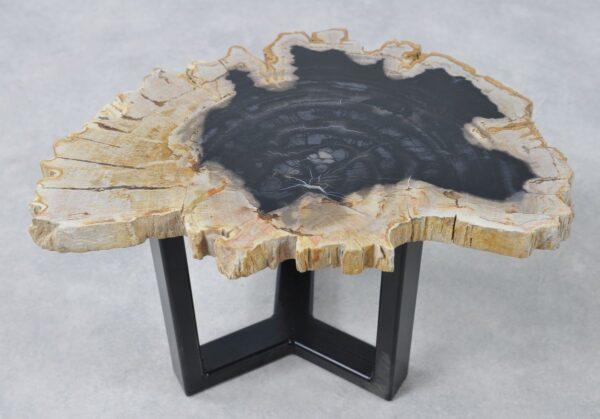 Table basse bois pétrifié 36162