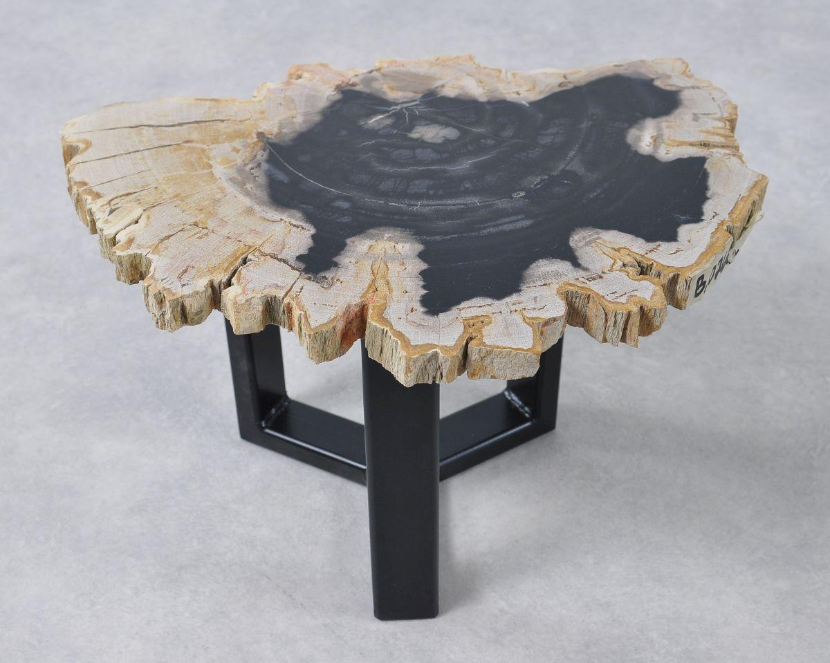 Table basse bois pétrifié 36163