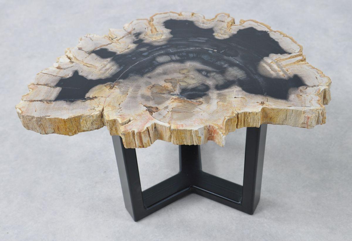 Table basse bois pétrifié 36168