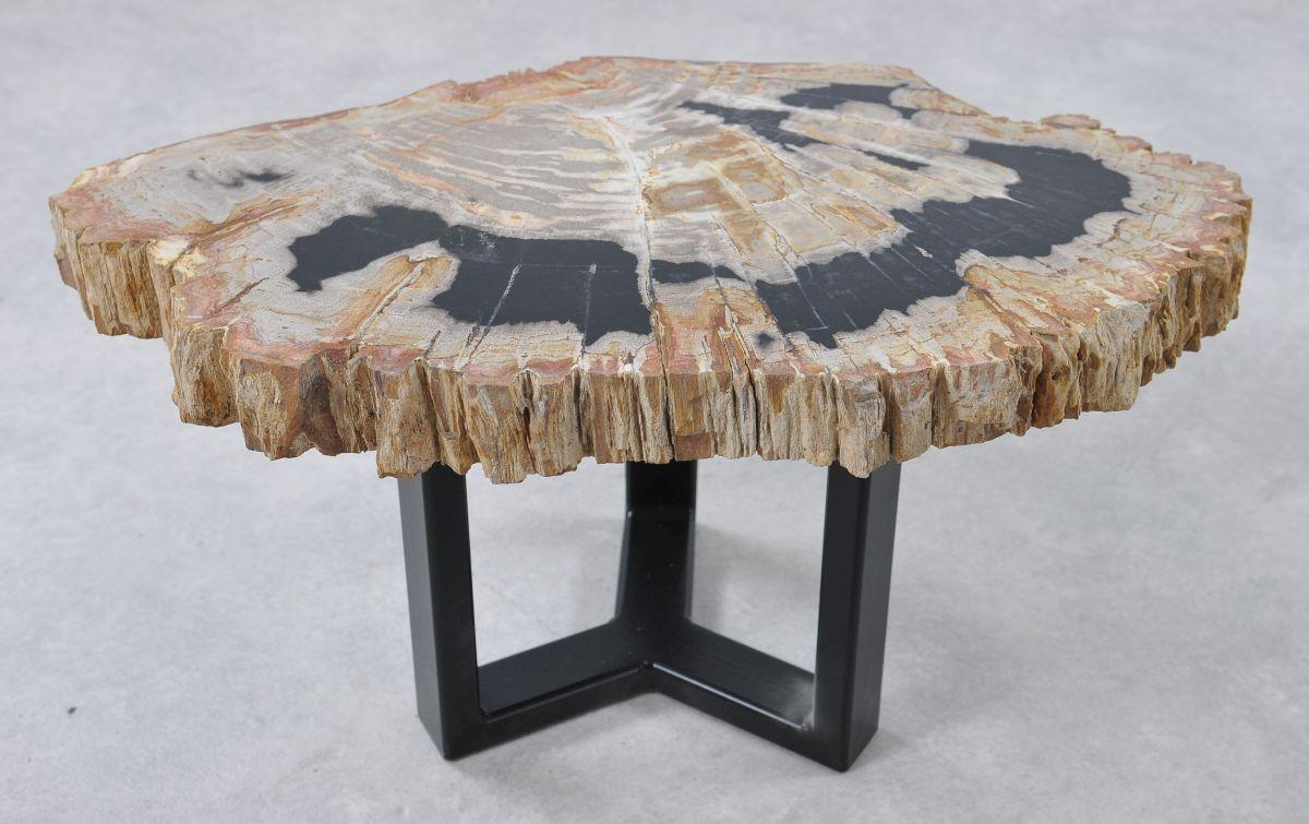 Table basse bois pétrifié 36176