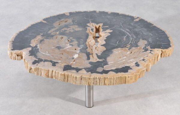 Table basse bois pétrifié 36179