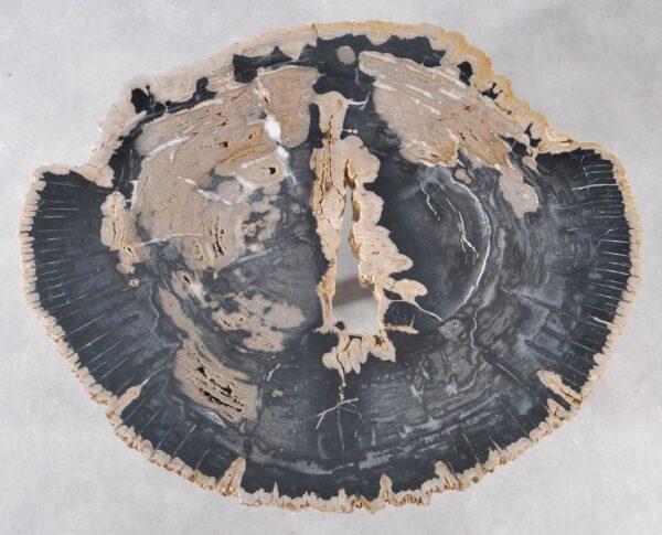 Table basse bois pétrifié 36180