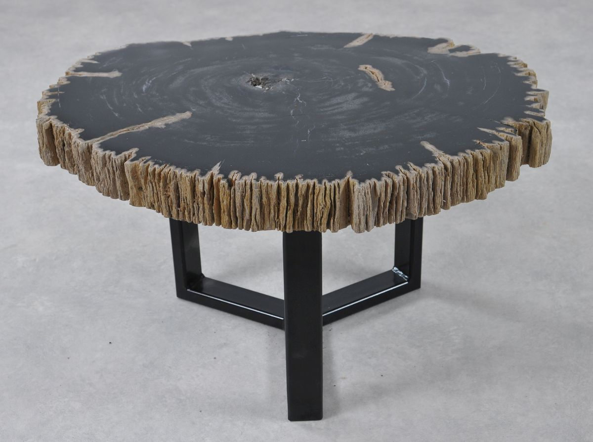 Table basse bois pétrifié 36182