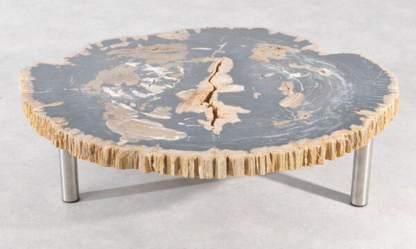 Table basse bois pétrifié 36186