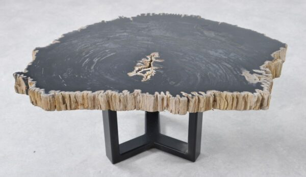 Table basse bois pétrifié 36190