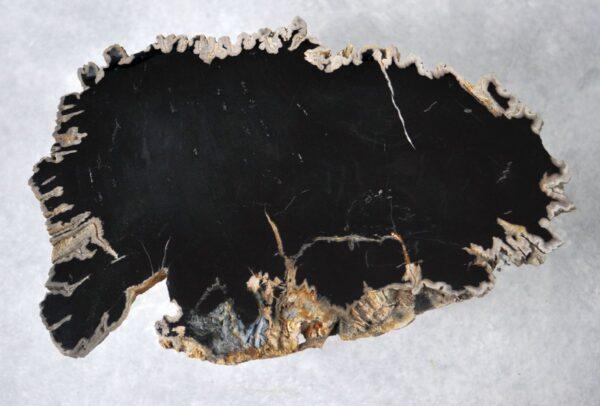 Table basse bois pétrifié 36192
