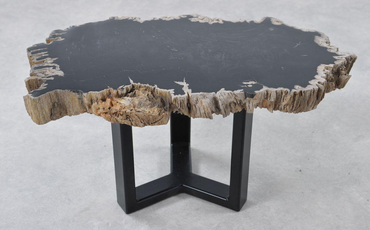 Table basse bois pétrifié 36193
