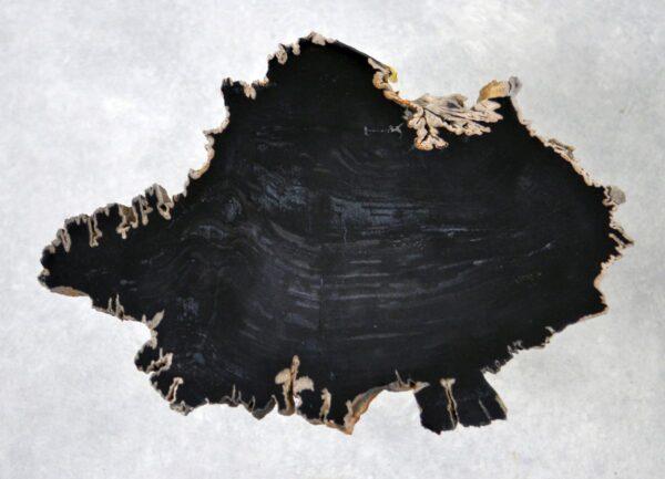 Table basse bois pétrifié 36194