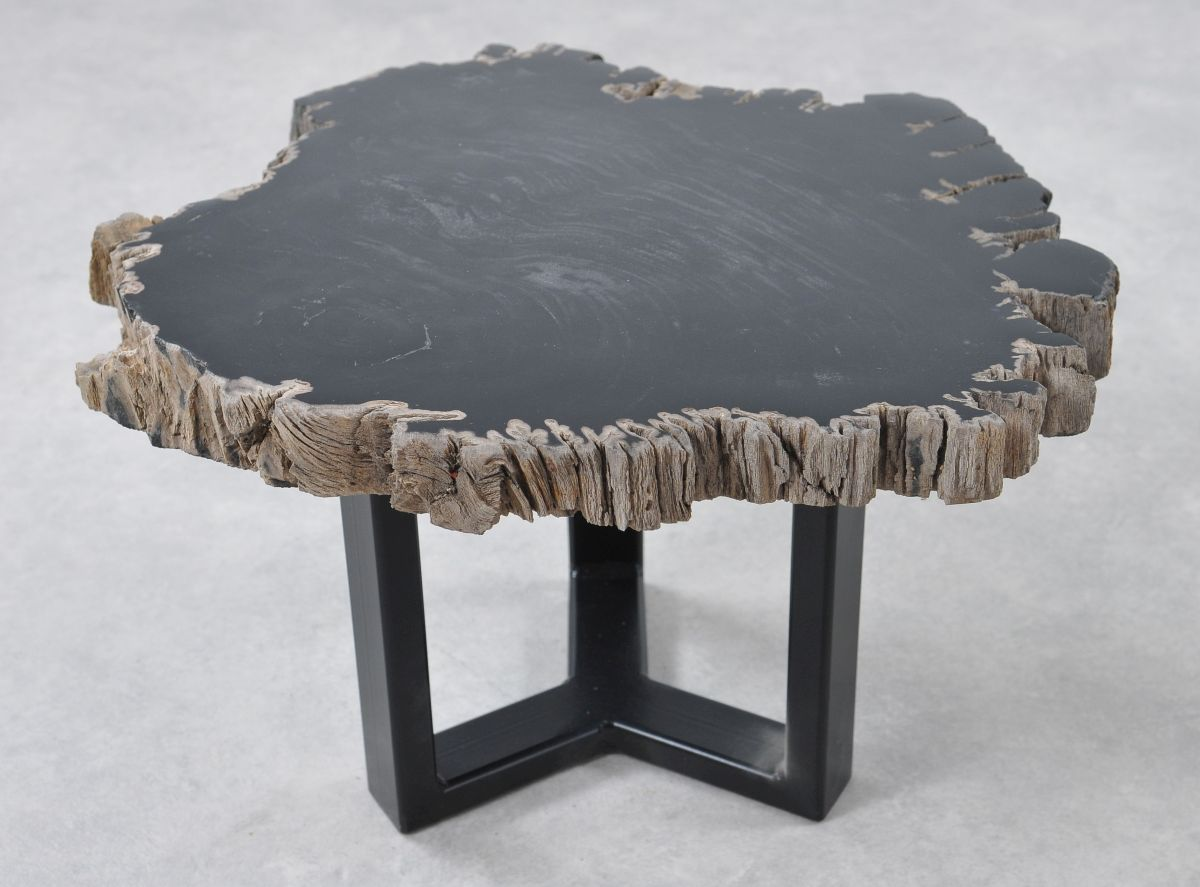 Table basse bois pétrifié 36197