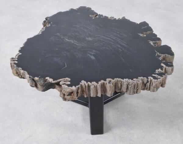 Table basse bois pétrifié 36198