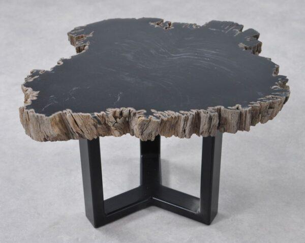 Table basse bois pétrifié 36199