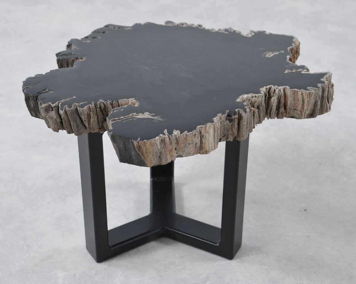 Table basse bois pétrifié 36201