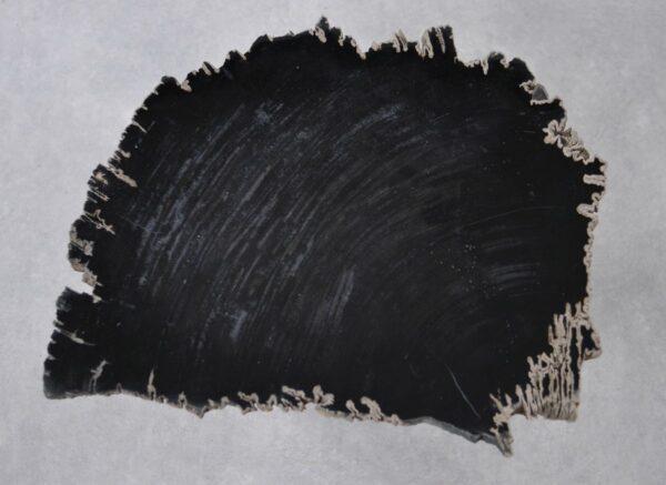 Table basse bois pétrifié 36202