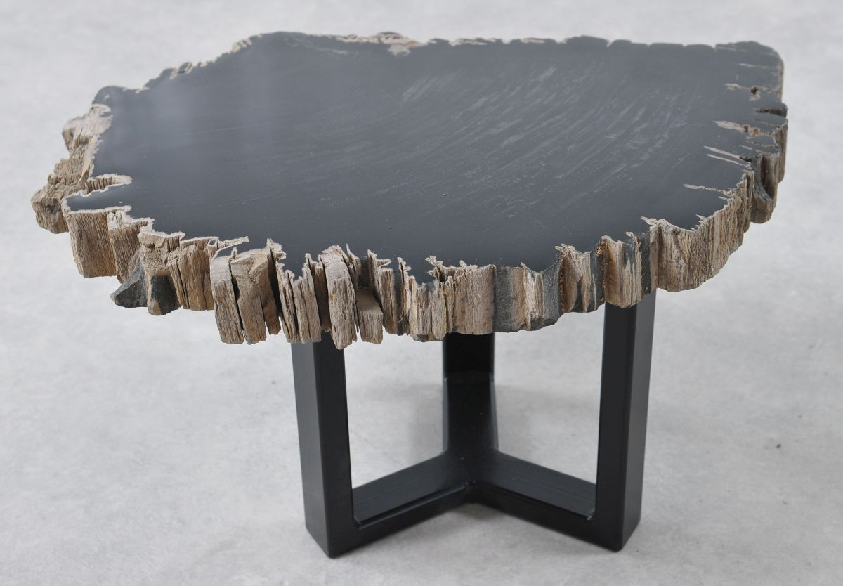 Table basse bois pétrifié 36203