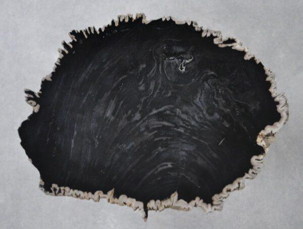 Table basse bois pétrifié 36204