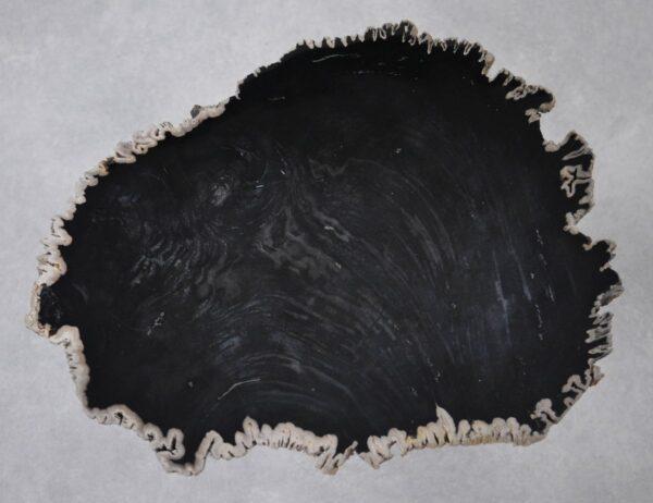 Table basse bois pétrifié 36207