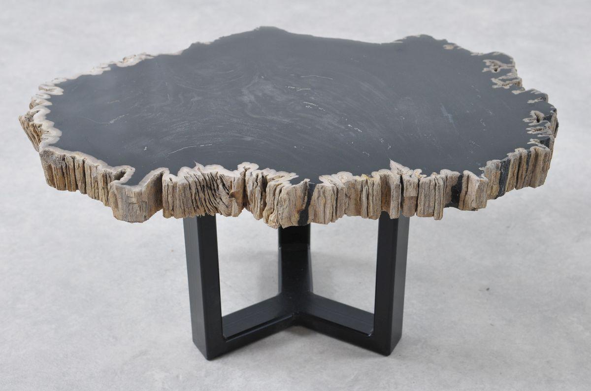Table basse bois pétrifié 36208