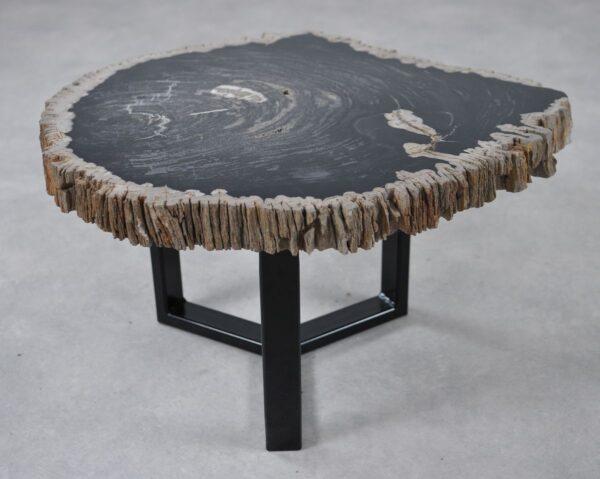 Table basse bois pétrifié 36209
