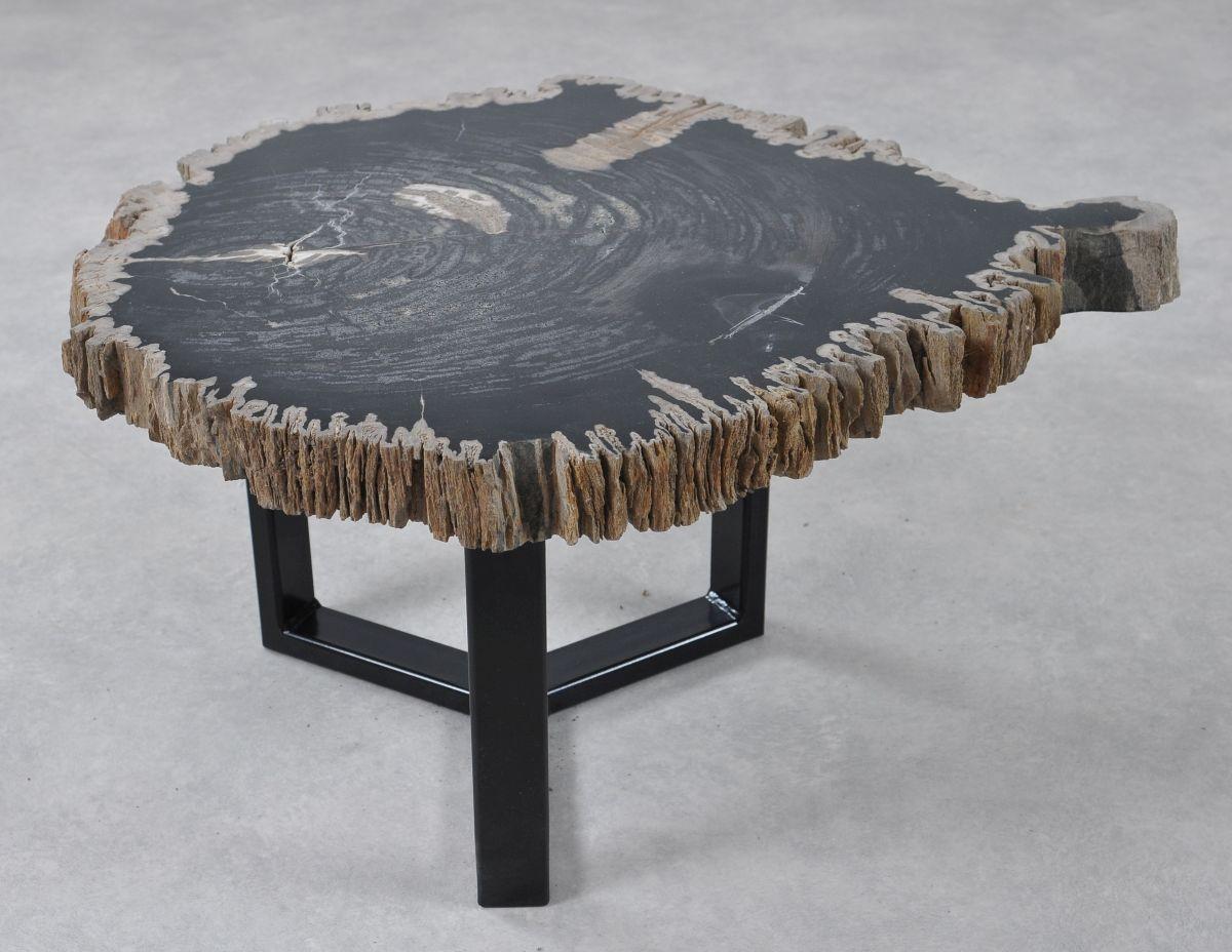 Table basse bois pétrifié 36210