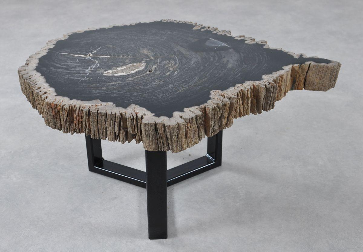 Table basse bois pétrifié 36211