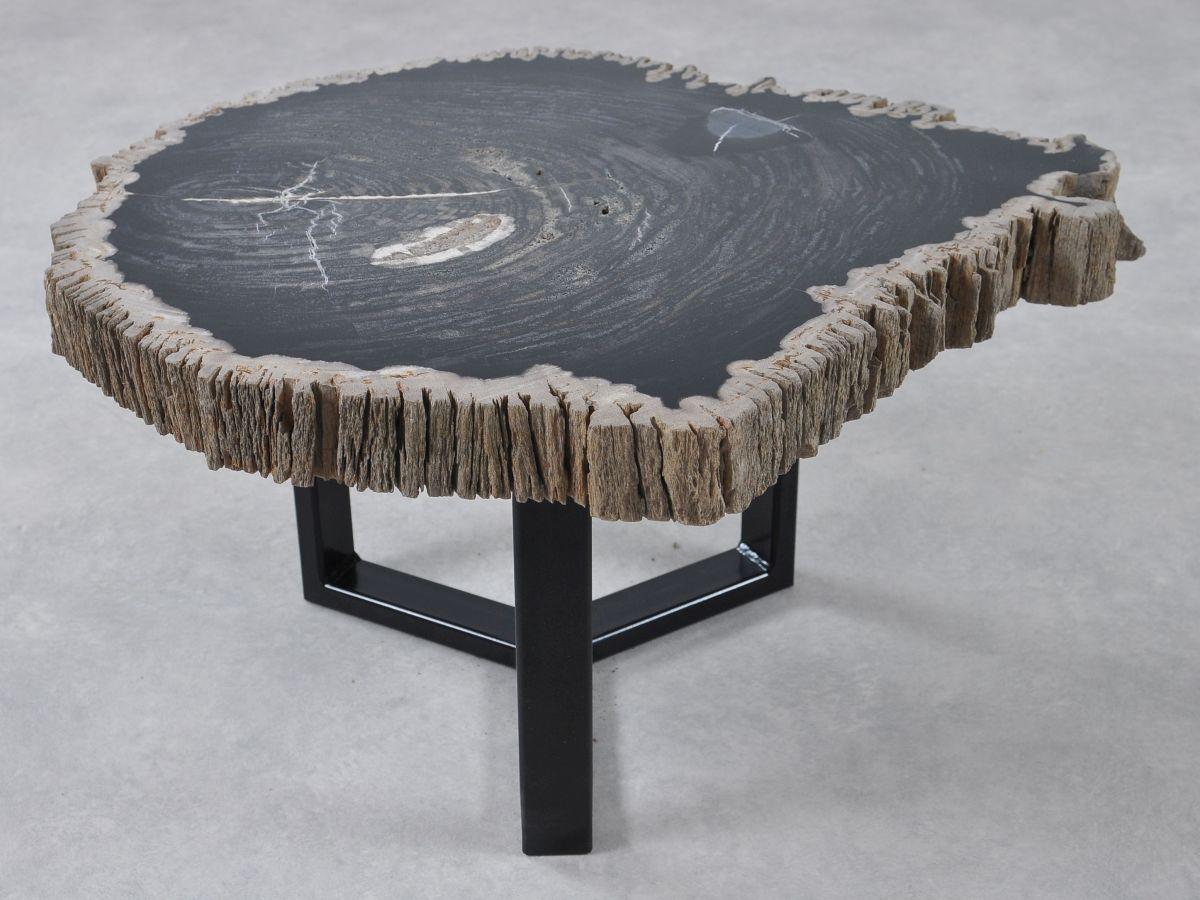 Table basse bois pétrifié 36212