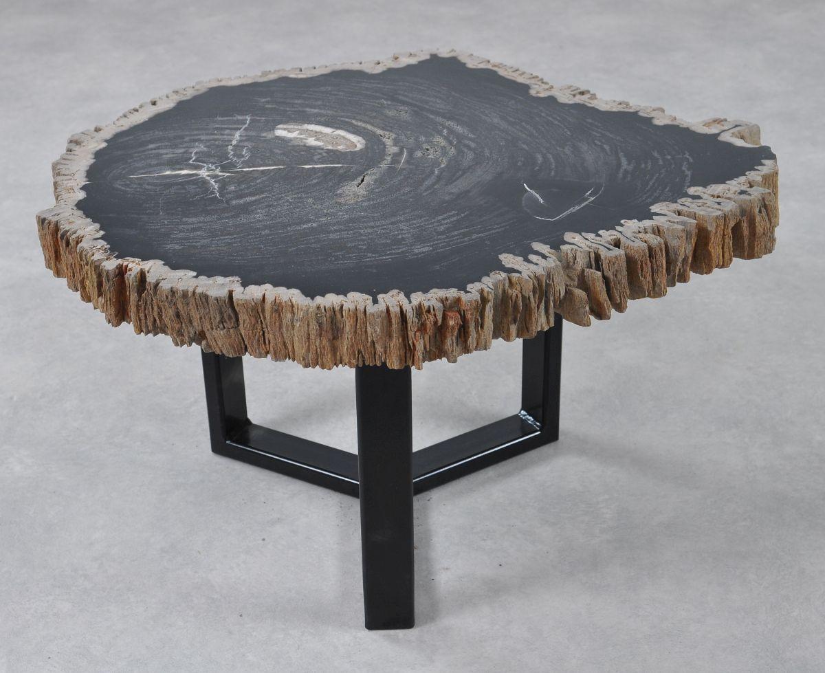 Table basse bois pétrifié 36213